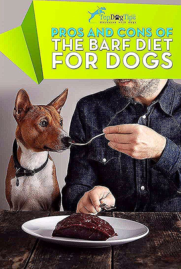Barf Diet For Dogs Feeding Your Dog Bones And Raw Food Is