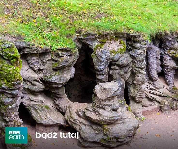 Poland-Tak prezentują się wnętrza Grot Mechowskich położonych we wsi Mechowo, w gminie Puck. To duża osobliwość geologiczna w skali naszego kraju i nie tylko. To jedyna w Polsce jaskinia sufozyjna i jedyna taka w całej Europie Północnej.  Powstała w zboczu morenowego wzgórza na skutek wypłukiwania przez wodę ziaren piasku spomiędzy odporniejszych na erozję skał osadowych. Najstarsza wzmianka o tej jaskini pochodzi z 1818 r