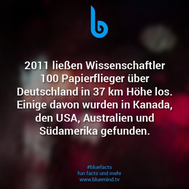 #bluefacts #fakten #facts #zitat #quote #weisheit #spruch #sprüche #love