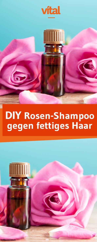 Fettige Haare? Dann hilft unser selbstgemachtes Shampoo mit Rosen- und Zedernöl!