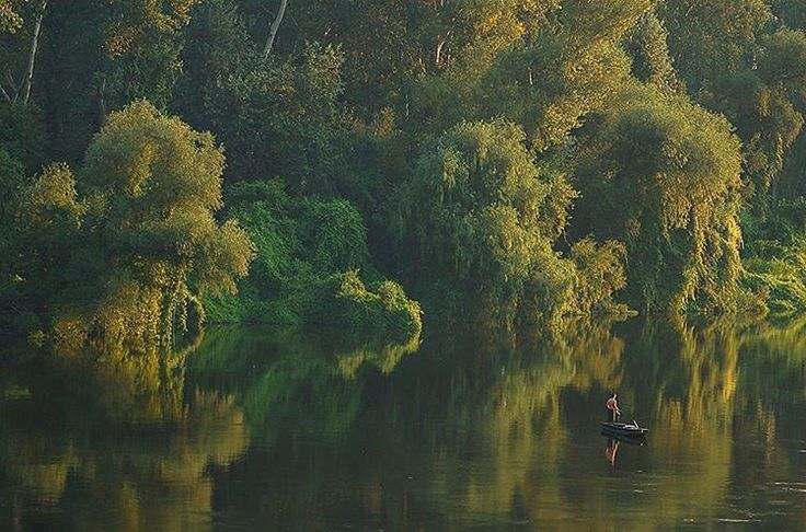 #Morning on the #river near #Tokaj Photo by Bihari Zoltán  #tokajwineregion #tokaji #visittokaj #tokajhegyalja #tokajiaszú #tokajwine #vineyard #tokajiborok #wine #aszú #ig_magyarorszag #ig_magyarország #hungary_gram #loves_hungary #visithungary #naturelovers #nature @eurotravellers #UNESCO #unescoworldheritage #worldheritage #worldheritagesite