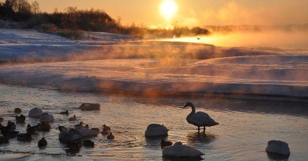3 health benefits of walking in winter