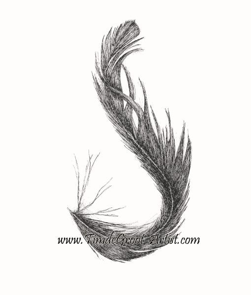 This is my beautiful fine line drawing of a feather found by fellow artist Sally Barling.  It forms the letter S which is part of the playful interactions we have together.  Feathers have a links to the spirit world and Free Falling is about putting your faith in destiny. #feather #ink #art #print #wallart #destiny #botanicals #sallybarling