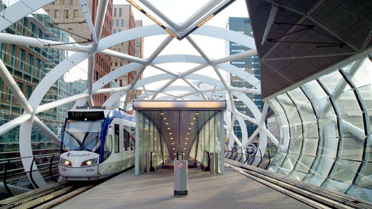 Netkous Den Haag