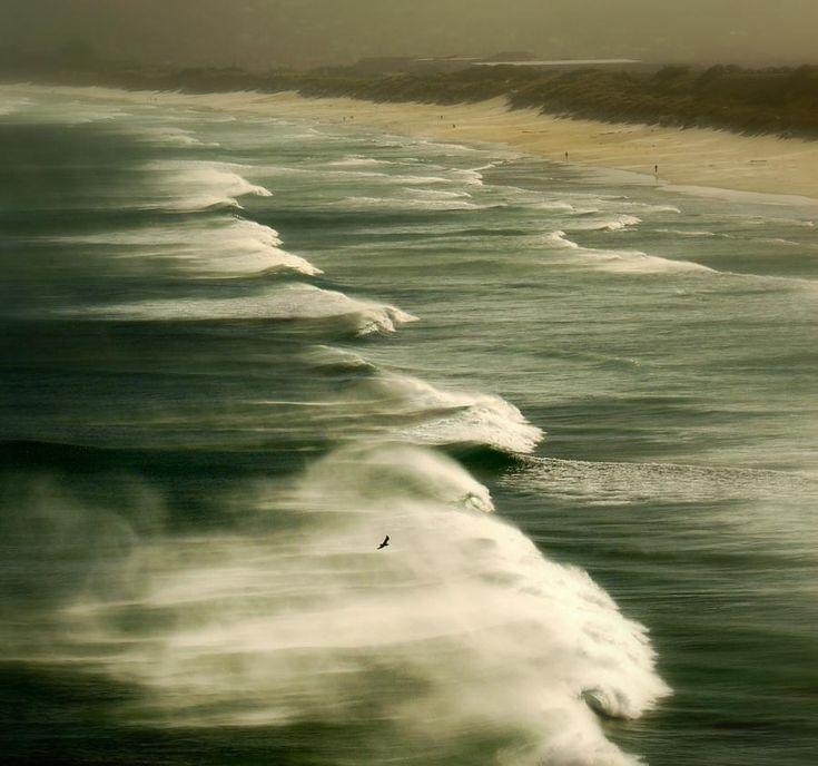 St Clair Beach - Wind and sea in Dunedin, New Zealand