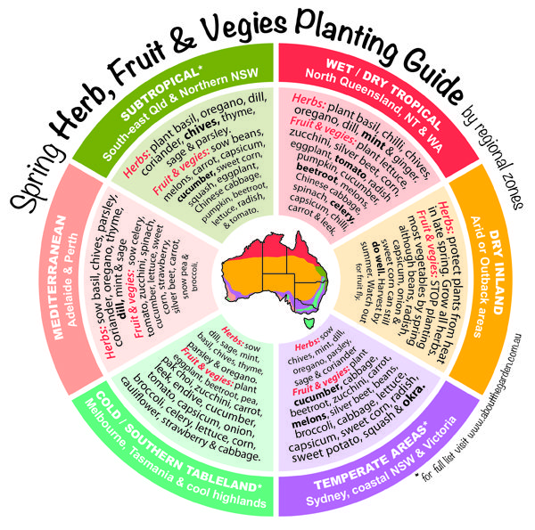 Spring Herb, Fruit & Vegies Planting Guide by temperate zones Australia. For more http://www.aboutthegarden.com.au #grownow #vegetables #gardening