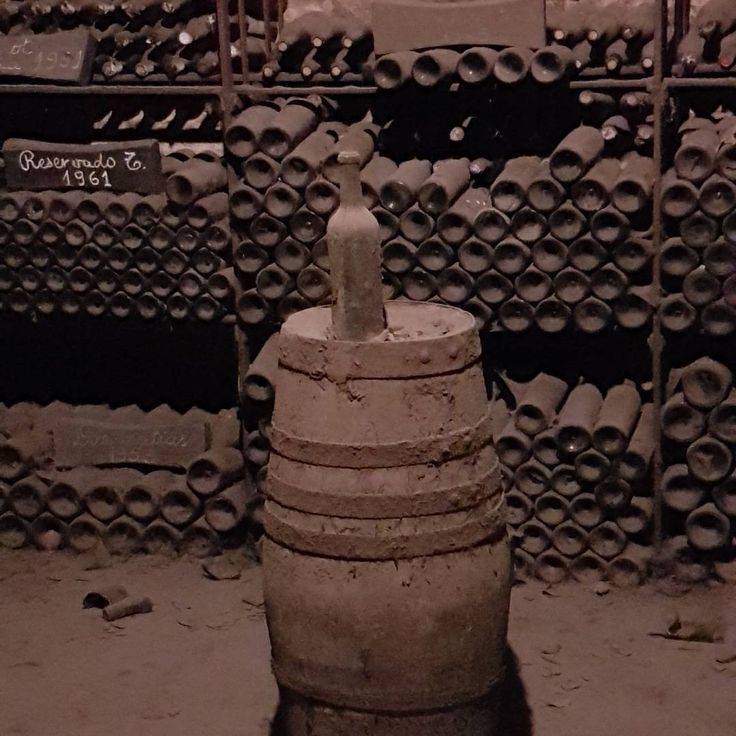 Visitando la Viña cousiño macul, pedazos de la historia de Chile. Increible la historia de isidora goyenechea, una gran emprendedora