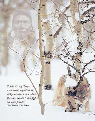 La complicité qui unit le loup et l'Indien leur a valu de subir des traitements semblables de la part des occidentaux. Leurs liens fraternels en ont fait avant tout des frères de douleur.