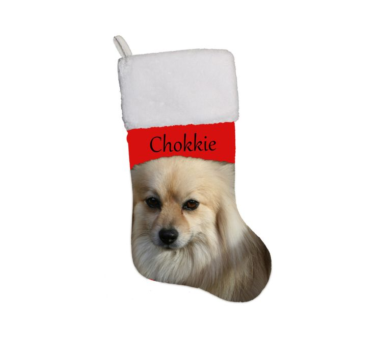 Personalized Photo-Christmas stockings. Your fur-baby's photo and name on the Christmas stocking