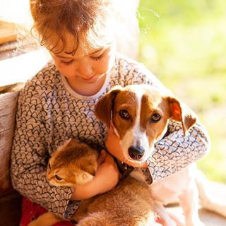 """Порой меня спрашивают: """"Зачем тебе столько животных? Ведь от них столько геморроя, да и денег много тратишь на их содержание..."""" А я вот испытываю огромное удовольствие, когда вижу их любовь и благодарность, преданность и заботу (да, да, когда я болею, собака лежит рядом), когда вижу, как с ними играет моя дочь, как она учится быть заботливой и ласковой, когда она учится помнить о том, что есть ответственность, что они не просто игрушки... что держать и брать их надо аккуратно... когда она…"""