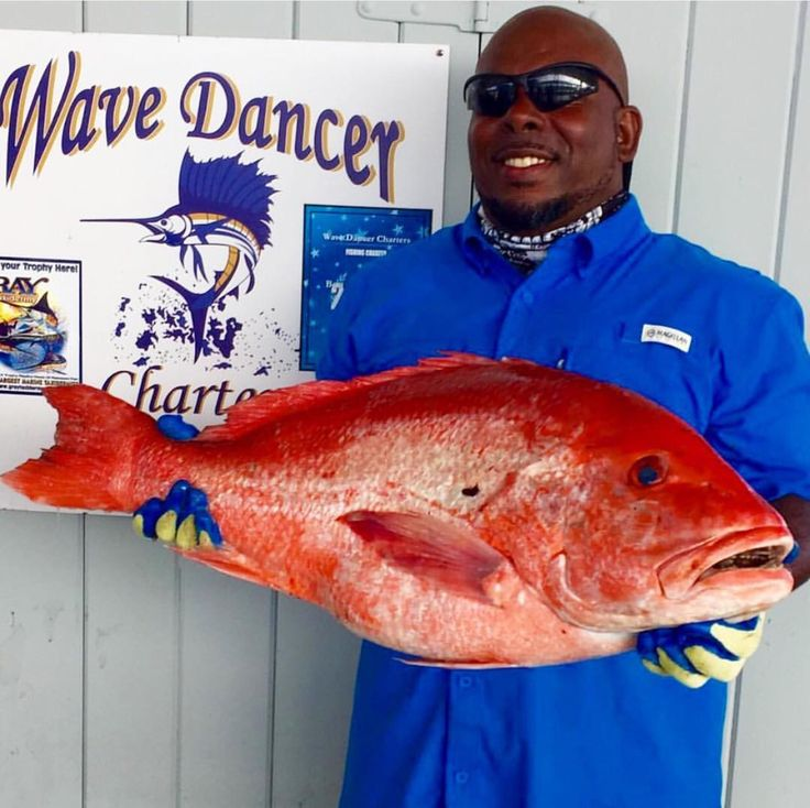 Big red snapper 28lbs - caught by Wave Dancer Charters in Galveston, TX - Book a charter with them today! | Fishing | Charter Fishing | Texas Fishing | Fishing Trip |