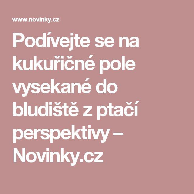 Podívejte se na kukuřičné pole vysekané do bludiště zptačí perspektivy– Novinky.cz