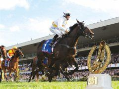 Longines Golden Slipper Carnival | Events in Sydney Prepare for one of the
