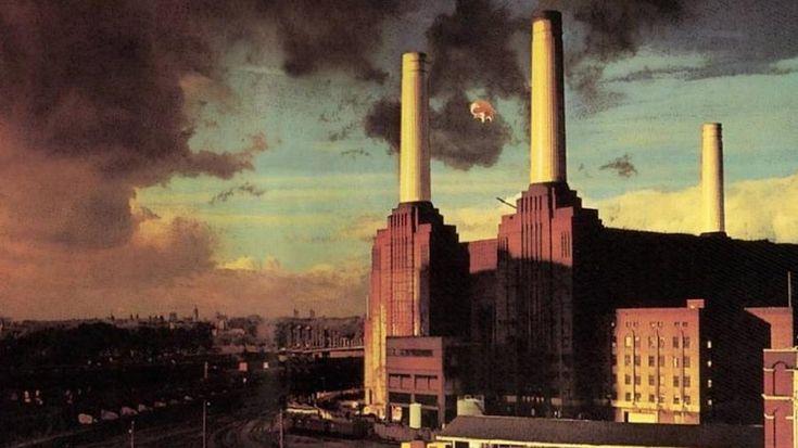 La historia de Algie el mítico cerdo de Pink Floyd http://www.sopitas.com/674382-algie-cerdo-volador-pink-floyd-animals-roger-waters/