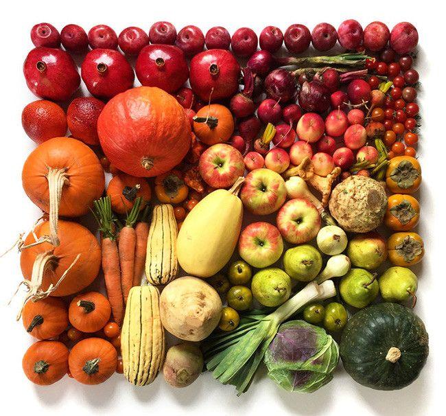 food gradient - Google Search