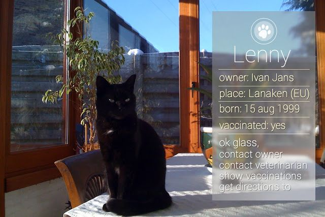 Imagine that you see a lost pet wearing a collar, if it is outfitted with a QR code, it is possible to find all the necessary date to bring the pet back home safely ... Read more http://imagine-life-with-google-glass.blogspot.be/2013/06/lost-pets-recognition-with-google-glass.html