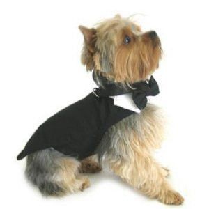 Black Dog Harness Tuxedo w/Tails Bow Tie Cotton Collar