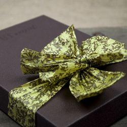 Chocolate & Sage Damask Paper Ribbon