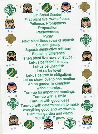 538 best images about Girl scout ideas on Pinterest ...
