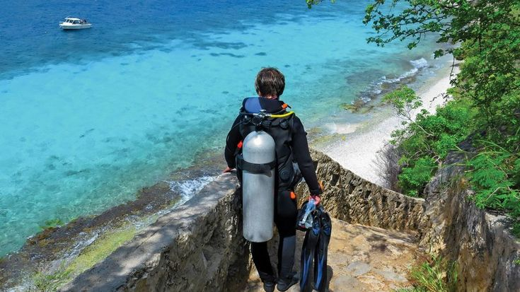 Help Scuba Diving Magazine Rank the Best Dive Locations in the World  Travel  Vote for your favorite scuba diving destinations sites and operators in Scuba Diving Magazine's 2019 Readers Choice Awards.  If you like our pins please follow us: http://ift.tt/2qGg6EH #ScubaDivingMagazine
