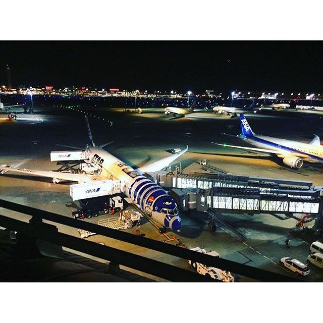 Instagram【key_092.petty】さんの写真をピンしています。 《夜さんぽ♡ 羽田空港国際線ターミナル!  息抜きになりました( ´͈ ᗨ `͈ )◞♡⃛ そしてスターウォーズの飛行機初めてみた♡ R2-D2仕様らしい! かわいい♡ 乗りたい!  I♡飛行機  #羽田空港 #羽田空港国際線ターミナル #スターウォーズ #飛行機 #飛行機好き #飛行機好きな人と繋がりたい #空港 #飛行機だいすき #夜さんぽ #夜景 #東京 #日本 #haneda #hanedaairport #hanedainternationalairport #hikouki #airplane #starwars #r2d2 #tokyo #japan #ig #ig_japan #ig_photo #iphonephoto #ig_airplane #nightview #nightviewphoto #nightview_japan #japan #japanesegirl》