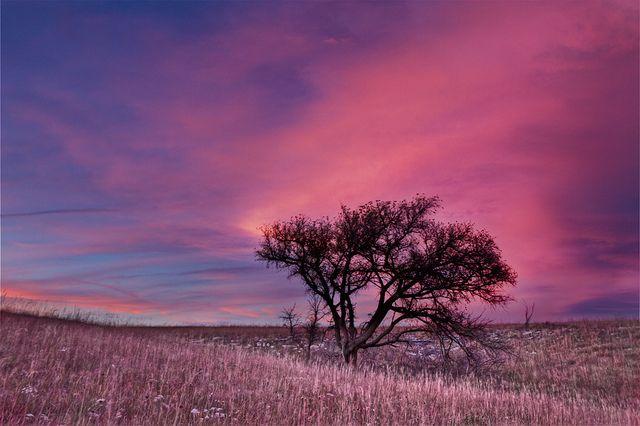 Sunset, Flint hills near Alma, Kansas