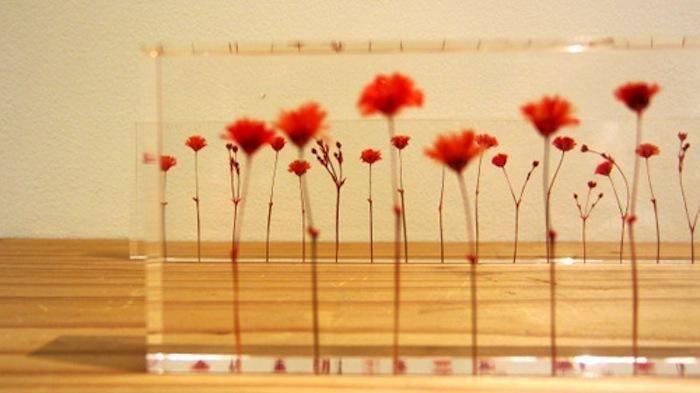 「f,l,o,w,e,r,s」  コレ何と、30センチ定規なんです。 アクリルの中に咲く花はぴったり1センチ間隔。