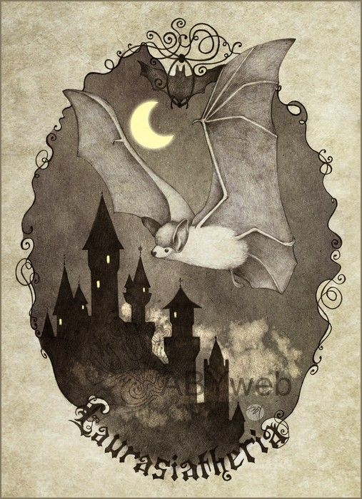 chauve souris noir chateau legende conte lune