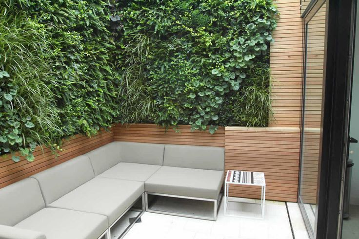 Vertical planting allows for good size bench sitting in small courtyard or along the side of the house.