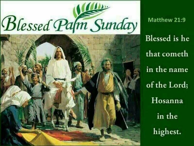 Blessed Palm Sunday (Matthew 21:9)