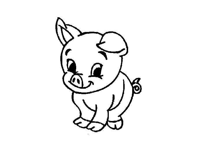 Baby Pig Colouring Pages