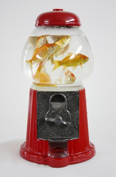 """Fish Machine Bank"" 