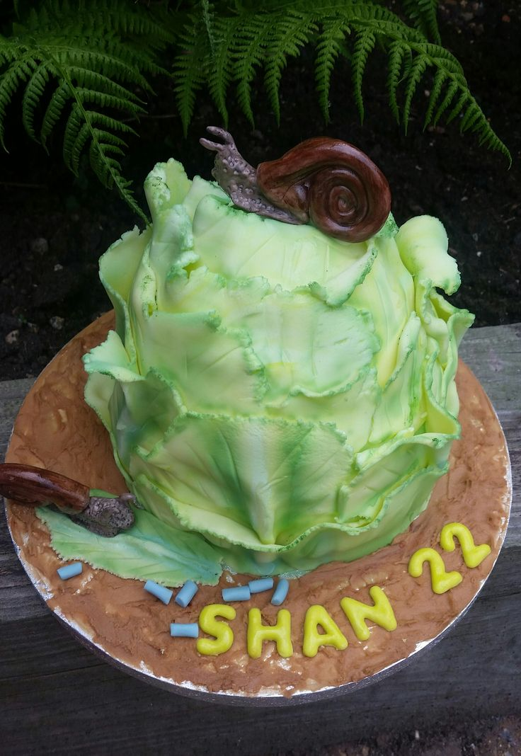 [Imagem: 67418fbdd774fae7a01d471faeb20afc--snail-...-cakes.jpg]