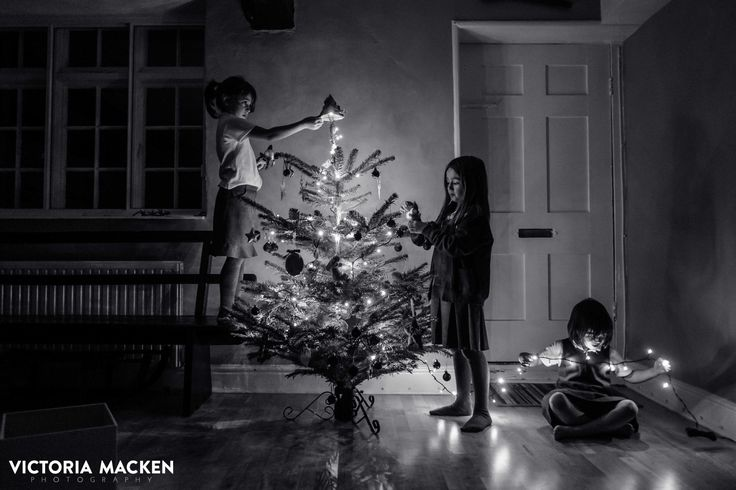 Oh Christmas tree.