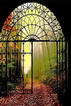 """""""The gate swung open without so much as a creak, the soft light seeming to pour in and beckon her through into this other, gentler world the likes of which she had never even dreamed..."""""""