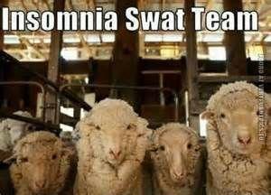 Insomnia Meme - Bing Images