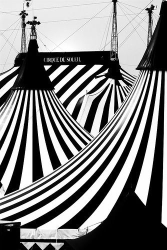 The black and white in this is ironic because there is a variety of tents but black and white doesn't suggest variation