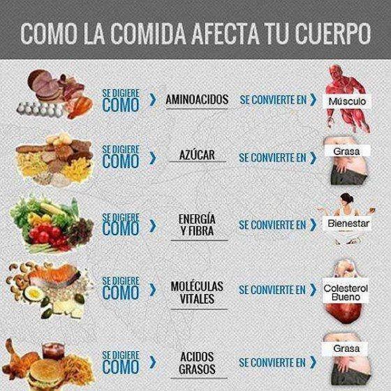 como la comida afecta al cuerpo