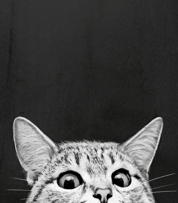 Hehe silly kitty peeking over the edge | Black & white art and home decor
