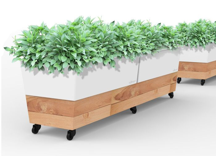 Glowpear Cafe Planter Boxes For Sale Planters And For Sale