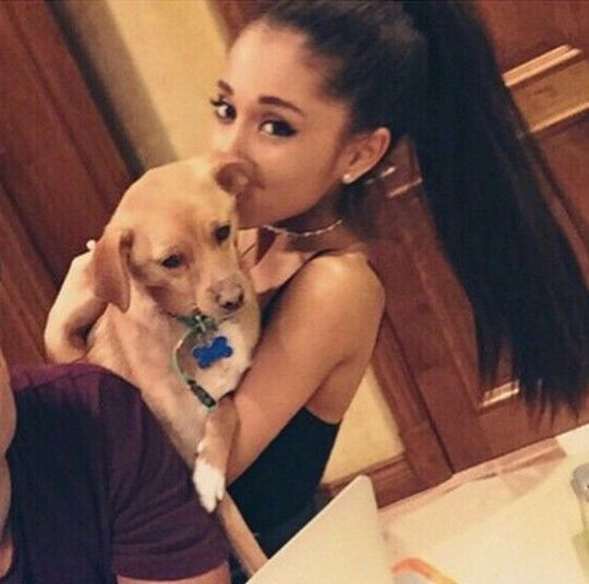 Hey I'm Ariana! Single but crushing really hard! I'm a singer. I'm also an actress! I was on Sam and Cat along with Victorious! I have two brothers and one sister! Introduce?