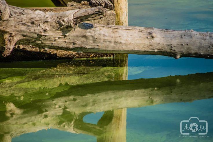 Foto: Laguna del Campillo