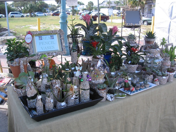 Recycle Shell Art  Sea Pencil Vases  Frames  Pots with Succulents and Cactus'