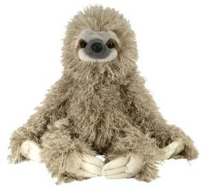 41 Awesome Sloth Gifts (All Things Sloth)