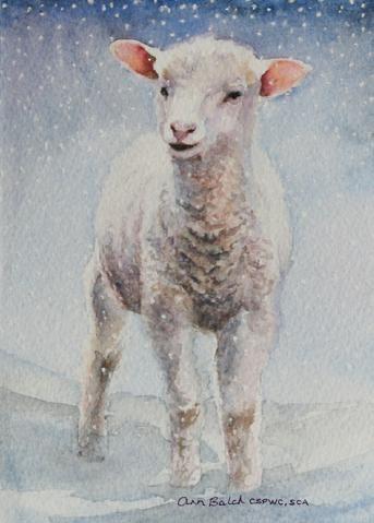 Ann Balch, it's snowing