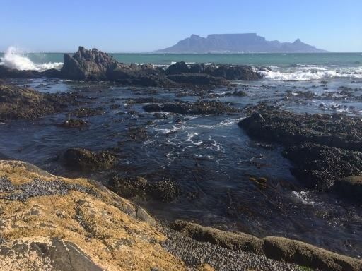 Sitting on mussel-encrusted rocks, watching the sea, listening to the ocean, feeling the wind. Priceless.