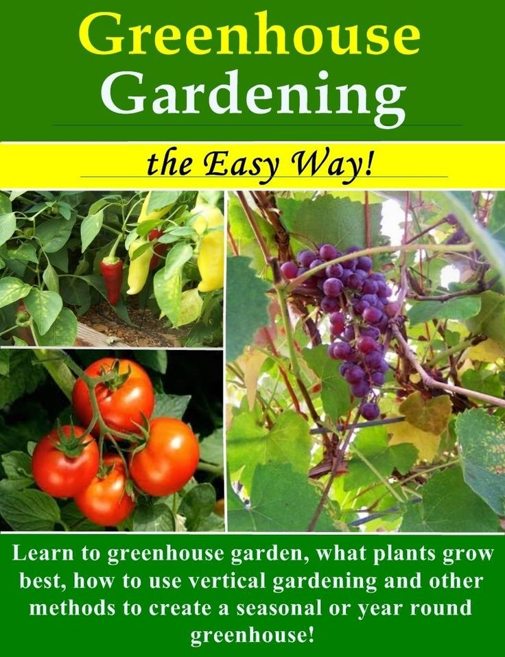 Greenhouse Gardening the Easy Way!: What plants grow best, how to use vertical gardening and other methods to create an optimal year round or seasonal greenhouse.