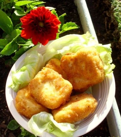 Cheese Fritters Recipe - Food.com