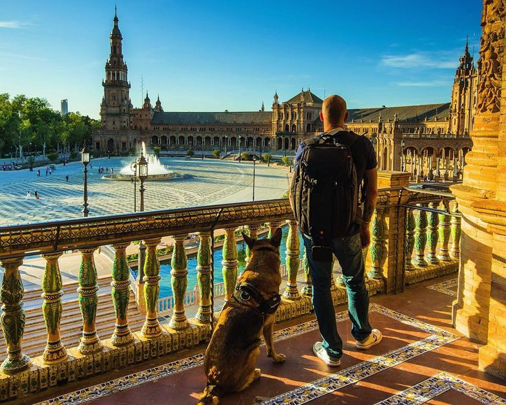 Although we prefer outdoor I felt like need to show my dog #sevilla and beautiful #plazadeespana  #spain#loves_spain#ig_andalucia#estaes_espania#estaes_andalucia#loves_andalucia#andalucia#greatoutdoors#loves_sevilla #ok_andalucia#travelphotography#potd#instatravel#visitspain#europe_gallery#eurotrip#adventurelife##hikingwithdogs#dogsofinstagram#traveldog#travelphotography#gsd#germanshepherd#alsatian