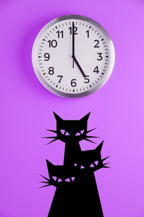 Best Feline Friends Cat Wall Stickers  Decals Images On - Custom vinyl wall decals cats